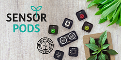SENSOR PODS - THE SEED OF OUR SUSTAINABLE FUTURE